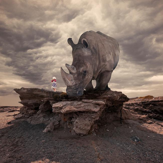 Hyper-rhinoceros