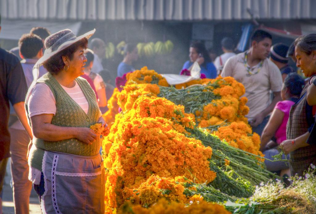 Mercdo de Jamaica, explorando, Ciudad de México, fotofestín