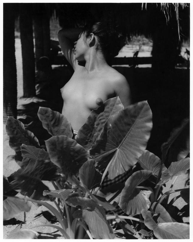 lola alvarez bravo fotografa mexicana mujer plantas